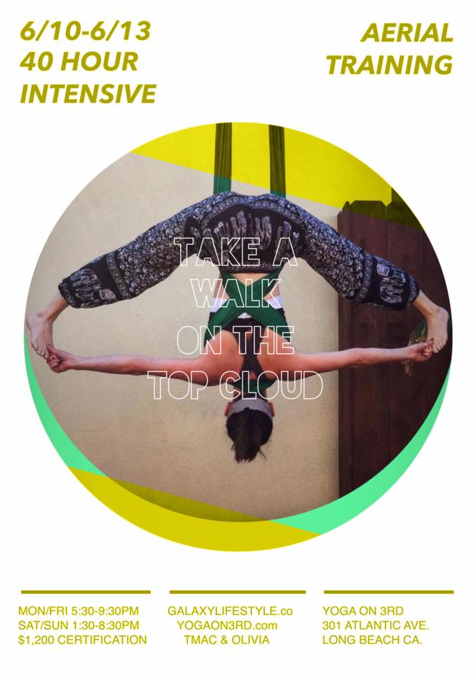 aerial-yoga-teacher-training