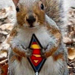super-squirrel